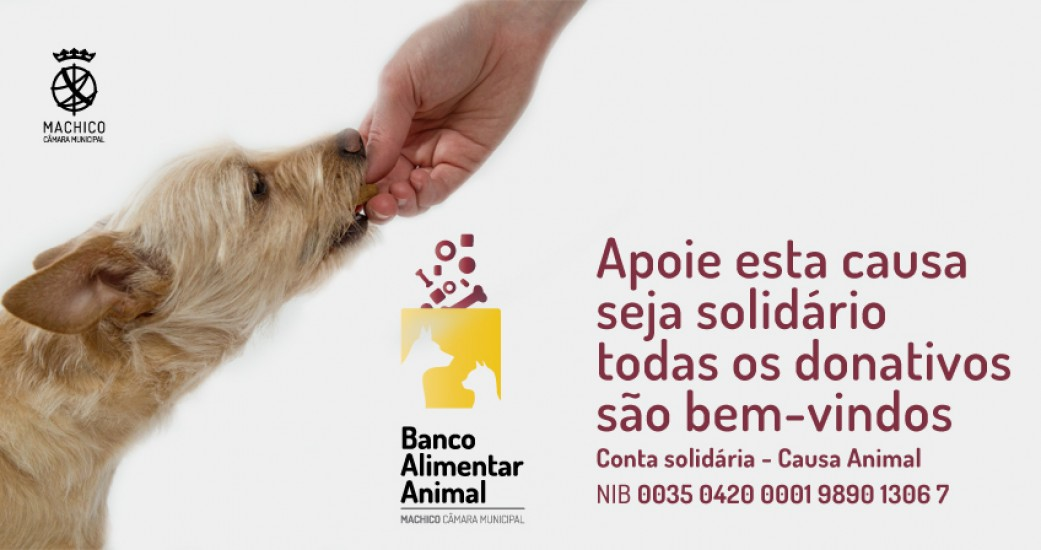 Conta_Solidaria_Causa_Animal_de_Machico