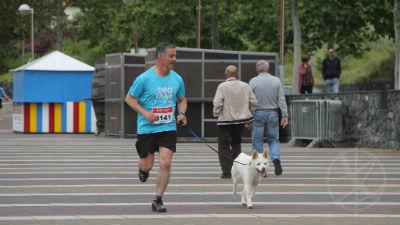 Dog Trail de Machico: foi assim a 3ª edição