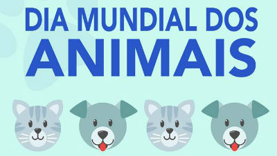 Dia Mundial dos Animais | Causa animal de Machico